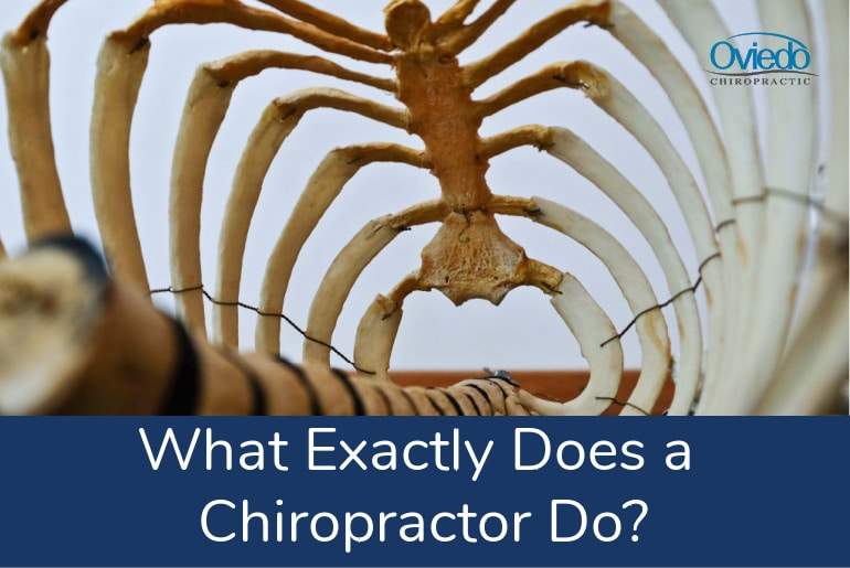what-exactly-does-a-chiropractor-do.jpg