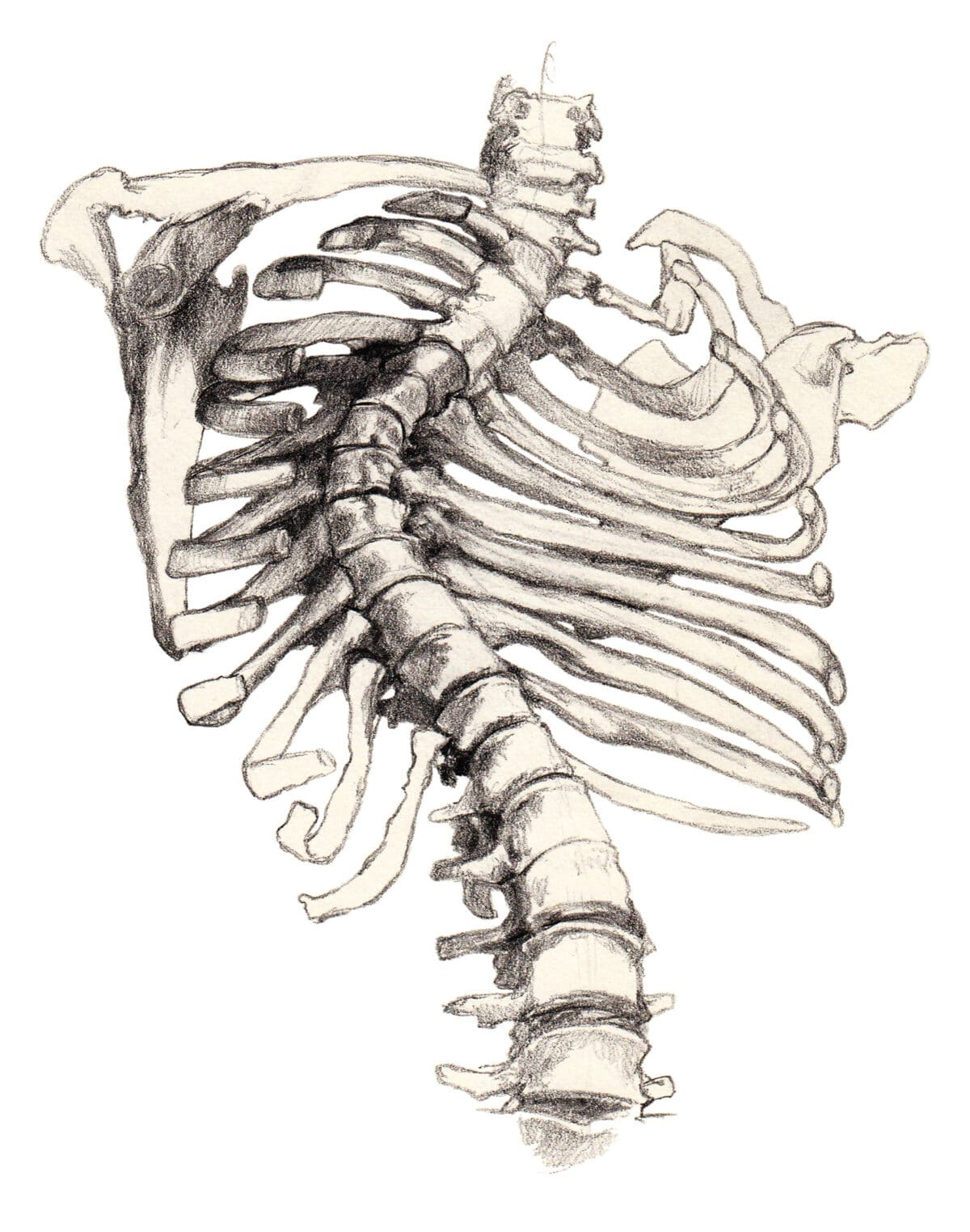 Scoliosis is a common cause of back pain when breathing.