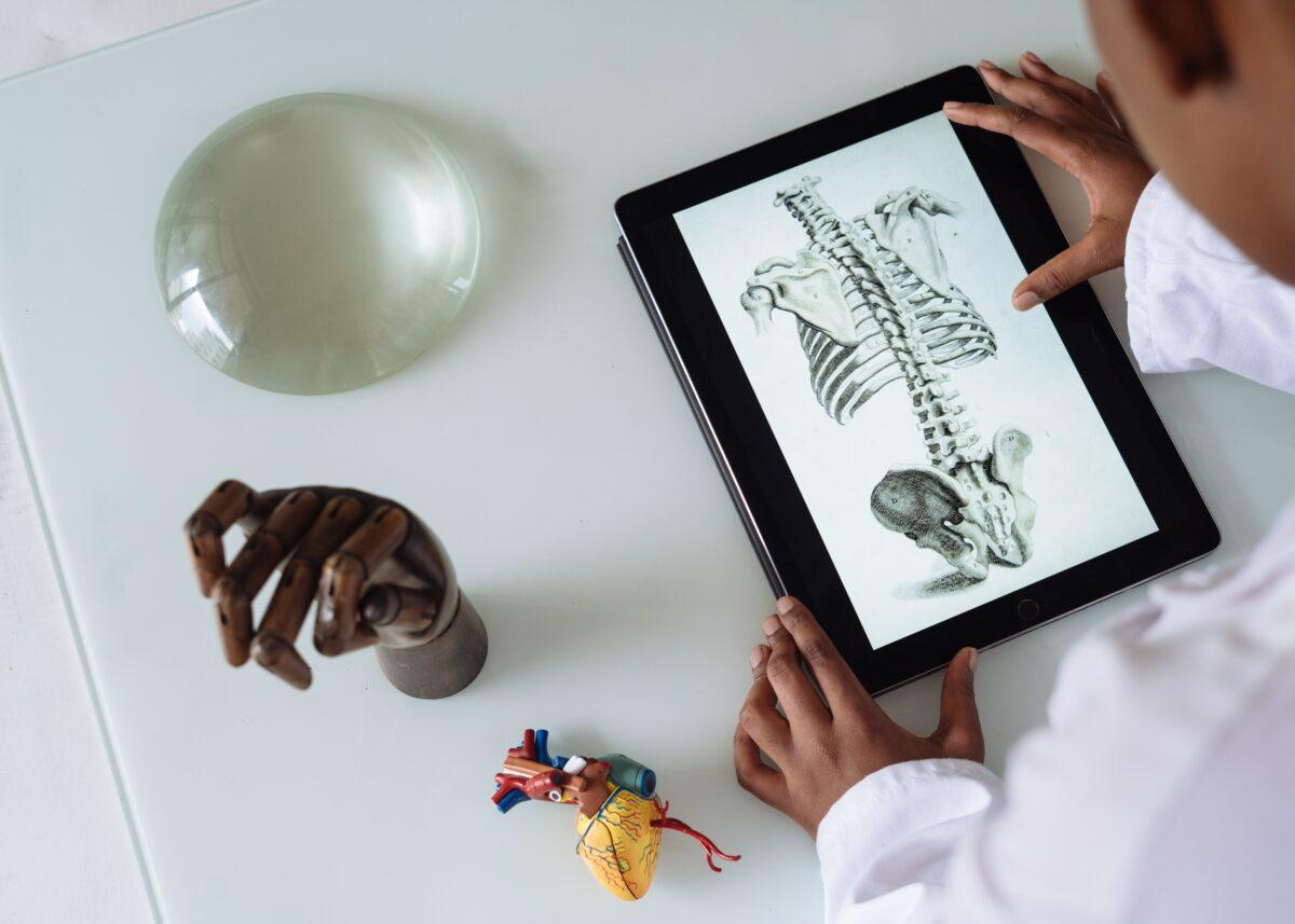 man studying spinal anatomy