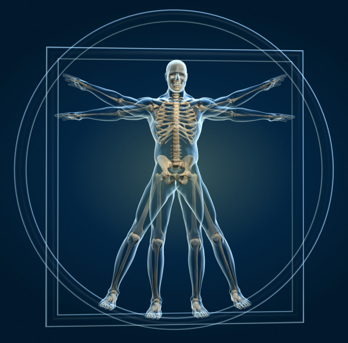 Chiropractors see (and treat) the body as a whole organism.